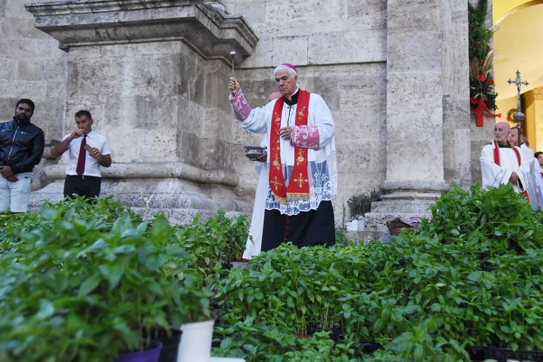 bened basilico 14
